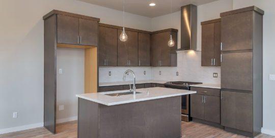 2669 SE Francis Portland 97202 kitchen pendant lighting